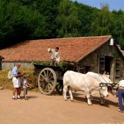 village a thème